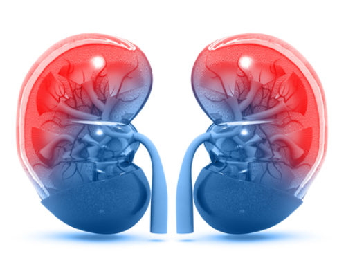 Symptoms That Your Kidney Needs Immediate Treatment